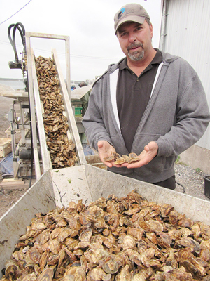 Jason Simpson, Oyster Grower