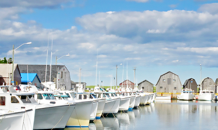 2020 employment opportunities across PEI in the aquaculture-fisheries industry.