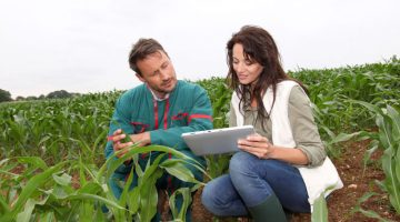 Seasonal and year-round agriculture employees are in demand